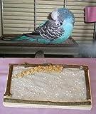 """Sitzbrett """"M"""", tolles Vogelzubehör für den Vogelkäfig für Wellensittich & Co."""