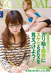 ガリ勉な姉貴にスケベなSEXを見せつけよう! [DVD]