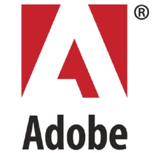 adobe flash funktioniert nicht