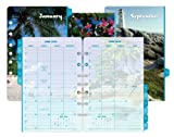 Day-Timer Coastlines 2-Page-Per-Month Calendar Refill, Monthly Tabs, Desk Size, 5.5 x 8.5 Inches, January - December, 2013 (D13300-1301)