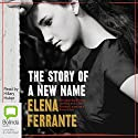 The Story of a New Name: The Neapolitan Novels, Book 2 Audiobook by Elena Ferrante Narrated by Hilary Huber