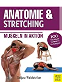 Anatomie & Stretching