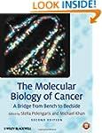 The Molecular Biology of Cancer: A Br...