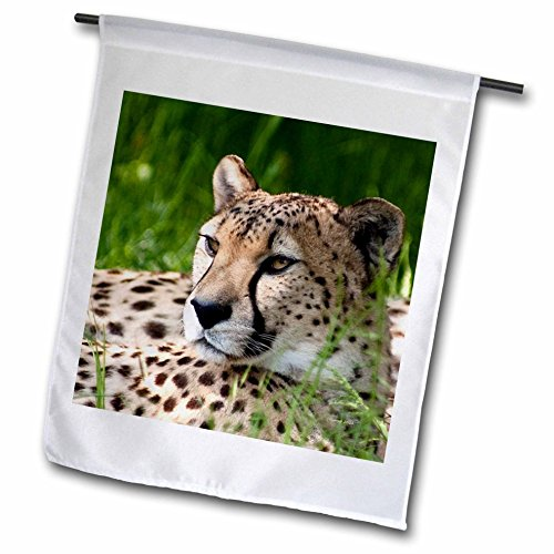 3dRose fl_22235_1 Cheetah Garden Flag, 12 by 18-Inch