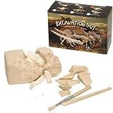 Fossilienset zum Ausgraben, klein hergestellt von BARTL