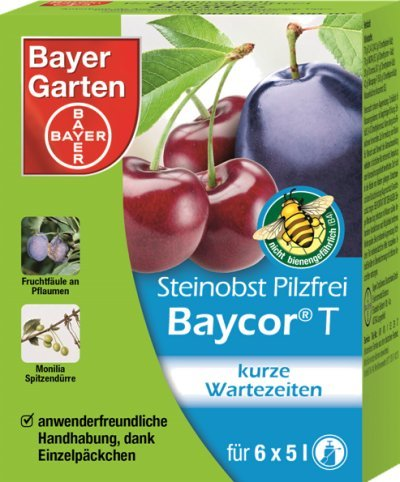 bayer-jgarten-84454265-fruits-a-noyau-sans-champignons-baycorc-30-g-6-x-5-g