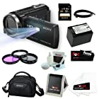 Sony HDR-PJ430V HDRPJ430V Handycam 32GB Full HD Camcorder w/ Projector + Sony 32GB Memory Card + Sony Case + Wasabi Power Replacement Battery for NP-FV70 + 3pc Glass Filter Kit and Accessory Kit