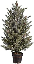 Fantastic Craft Pine Tree 35quot Snow