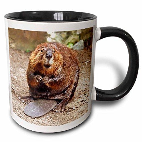 Wild Animal Mug - Beaver - 11oz