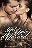 Not Quite Married, A Wilde Brothers Short (The Wilde Brothers)