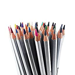 Bayam 48-count Colored Pencils / Coloring Art Drawing Pencils for Artist Sketch/ Adult Coloring Book/ Kids Artist Writing/ Manga Artwork