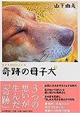 奇跡の母子犬