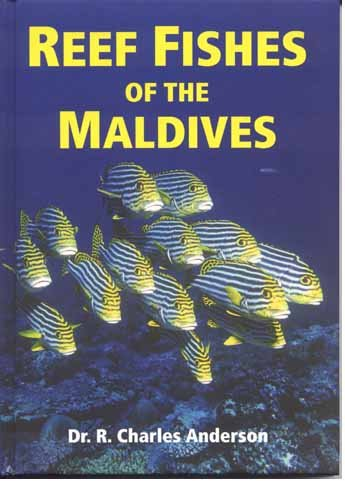 reef-fishes-of-the-maldives
