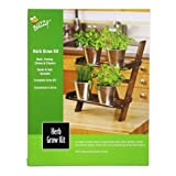 Buzzy Herb Grow Kit w/ Wooden Growing Stand, Seeds, Soil & Pots