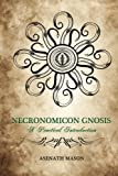img - for Necronomicon Gnosis: A Practical Introduction book / textbook / text book