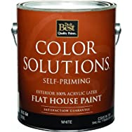 Color Solutions Latex Flat Self-Priming Exterior House Paint-EXT FLAT WHITE PAIN