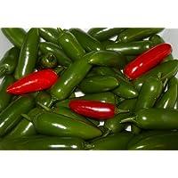 Serrano Hot Pepper 4 Plants - Great for Salsa!