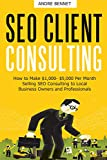 SEO CLIENT CONSULTING: How to Make ,000- ,000 Per Month Selling SEO Consulting to Local Business Owners and Professionals