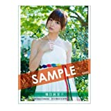 AKB48 スリーブコレクション 篠田麻里子