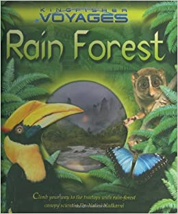 an introduction to the history of the rain forest Introduction the extent, biomass and structure of african rainforests  africa is  the origin continent of humanity, and african rainforest.