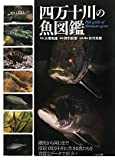 四万十川の魚図鑑