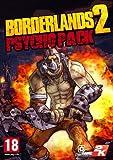 Borderlands 2 - Psycho Pack DLC [PC Steam Code]
