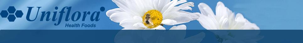 uniflora-propolis.hostedbyamazon.com
