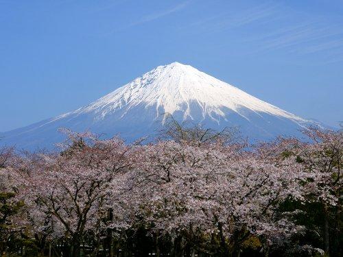 風呂のタイルに貼る富士山の写真ー2