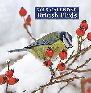 2015 Calendar British Birds