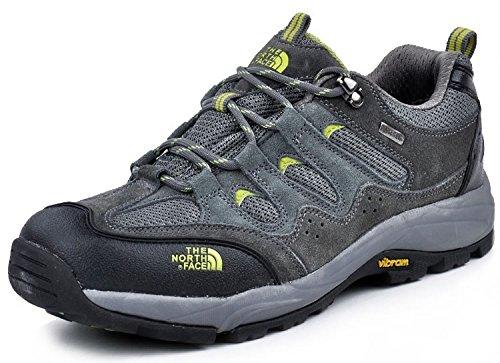 THE NORTH FACE ザ ノースフェース GoreTex ゴアテックス 防水 トレッキングシューズ 登山靴 ローカット スニーカー アウトドア シューズ (EUR42(26CM), グレー)
