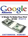 Google Adsense Guide- 11 Weeks to Your First $100 | Make Money From Home