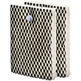 NEW Holmes Hwf100 Bionaire Antimicrobial Humidifier (E) Wick Filters - 2 Pack