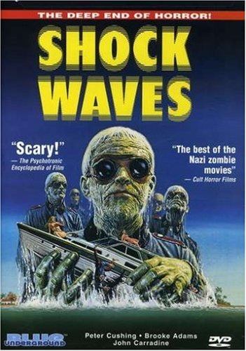 Shock Waves Picture