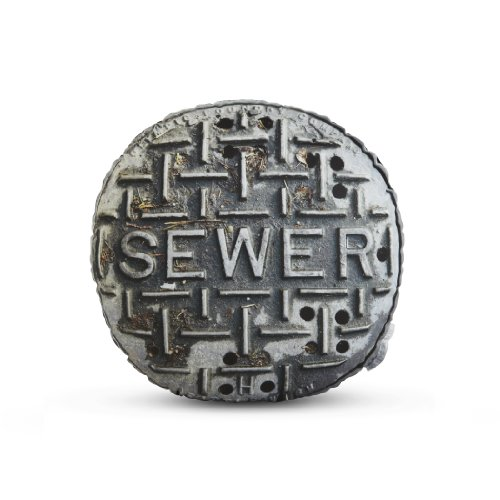 Seattle Sewer Pillow
