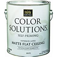 - CS46W0840-16 Color Solutions Self-Priming Latex Interior Ceiling Paint