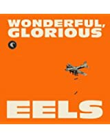 Wonderful Glorious: Deluxe Edition