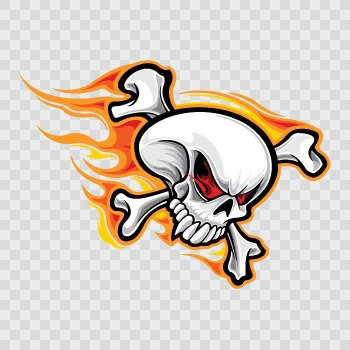 Skull With Flames... Color print (18 X 13.2 inch) ZE483