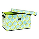 SCOUT Rump Roost Large Lidded Storage Bin, House of Chard, 24 by 15 by 15-Inches