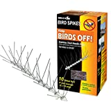 Bird-X STS-10-R Stainless Bird Spikes 10 foot Kit ~ Bird-X