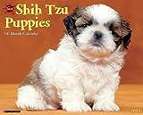 Shih Tzu Puppies Calendar