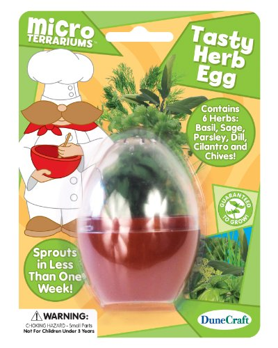 Dunecraft Tasty Herb Egg Science Kit - 1
