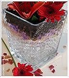 10 sachets de perles d'eau monochromatiques * TRANSPARENCE * (MEDIUM 0.8 to 1.4 cm) de Deco-Boulevard - La décoration idéale pour n'importe quelle occasion! Décoration pour fleurs , bougies, feux de thé ; Peut être utilisé comme décoration d'évènements, de fêtes , de mariages. Aussi connues comme water beads, crystal soil, crystal mud, marble, gel beads, hydro balls, hydrogel, Aqua Pearls, Aqualinos, Ready Aqualinos, Water storing pearl, Jelly beads, water gel, magic beads, Marbles