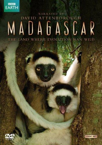 Madagascar-2011