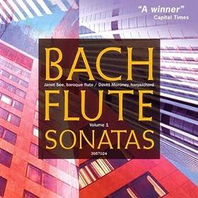 Sonata in E Minor, BWV 1034: IV. Allegro