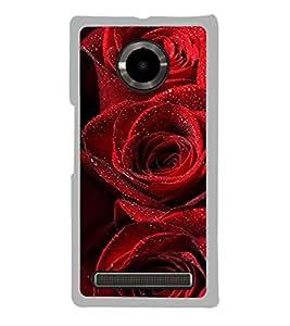 Red Roses 2D Hard Polycarbonate Designer Back Case Cover for YU Yuphoria :: YU Yuphoria YU5010