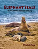 img - for Elephant Seals at the Piedras Blancas Rookery book / textbook / text book