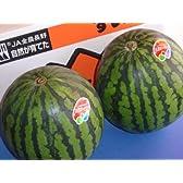 フルーツyamakiti 一番成り 信州産 西瓜 2Lサイズ2玉