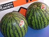 フルーツyamakiti 一番成り 信州産 西瓜 Lサイズ2玉 ランキングお取り寄せ