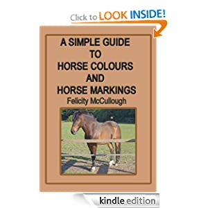 A Simple Guide To Horse Colours And Horse Markings