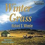 Winter Grass | Richard S Wheeler
